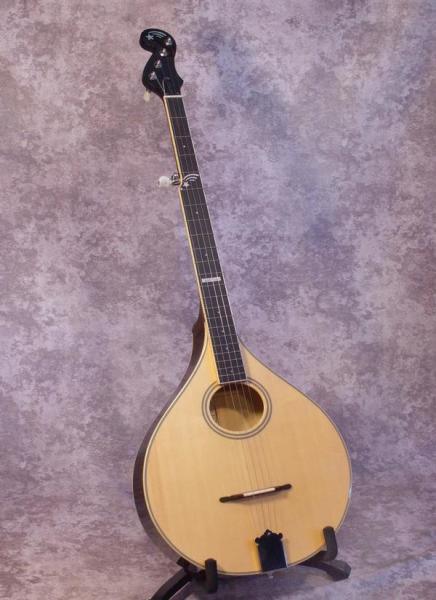 Gold Tone Banjola (1)