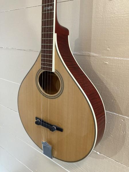 Gold Tone Banjola (wood body banjo) (1)