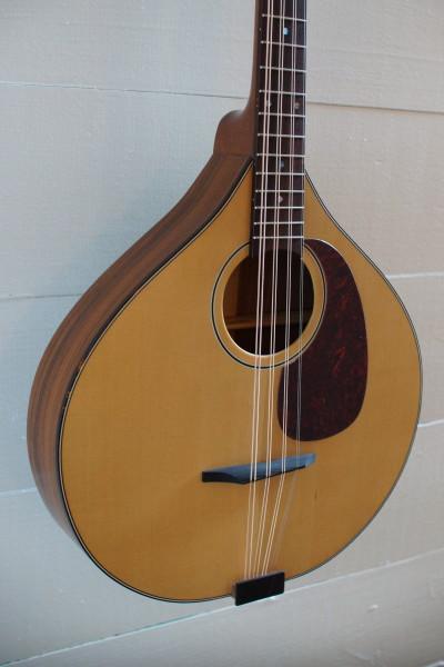 USED Petersen Octave Mandolin (4)