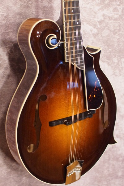 Collings MF5 Fern (1)