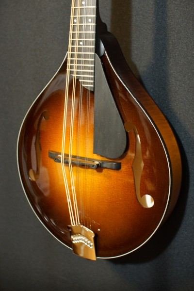 Collings MT (upgraded!) (8)