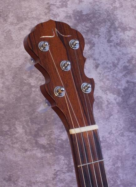 John Allison 6 String Banjola (2)