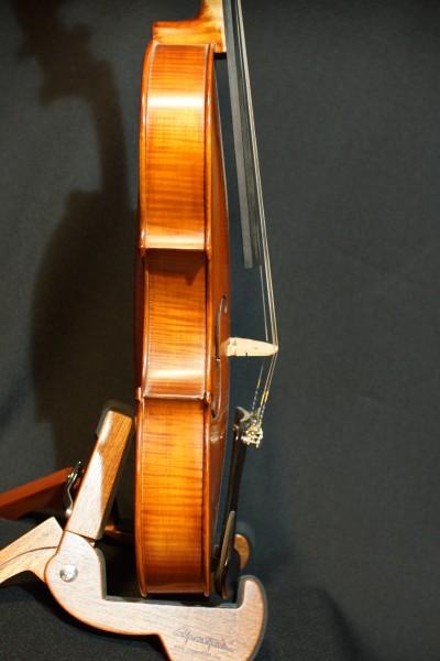 2011 Gliga Viola (6)