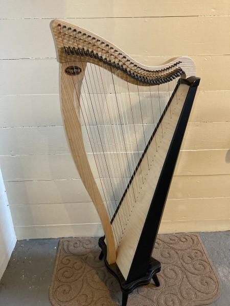 USED Dusty Strings Ravenna 34 (1)