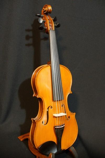Gliga Gems 1 Five String Fiddle (7)