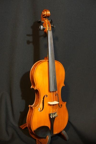 2011 Gliga Viola (3)