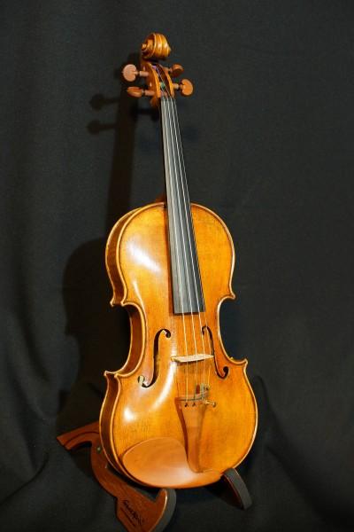 Josephus Bosio Stradivarius  (6)