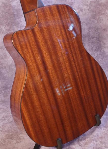 Gold Tone GBG+ Baritone Guitar (2)