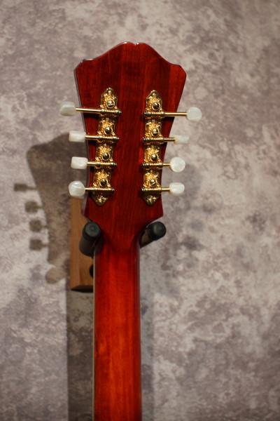 Eastman MDC804 Mandocello (3)