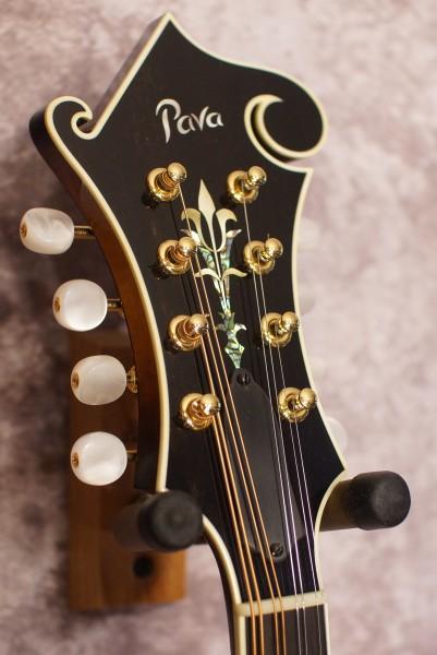 Pava Pro F5 (5)