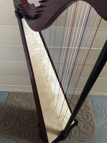 Dusty Strings Serrana 34 Harp w/pickup (5)