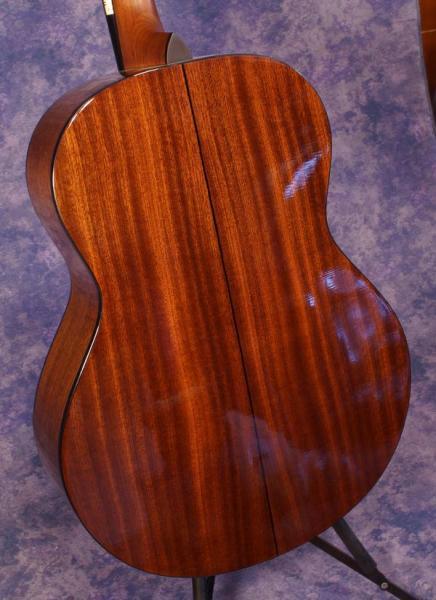 Gold Tone  TG-18 Tenor Guitar (3)