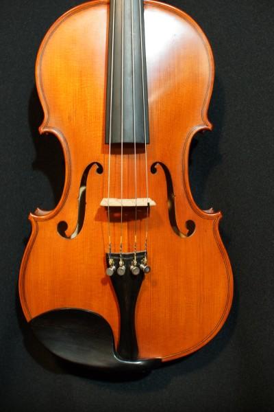 2011 Gliga Viola (1)