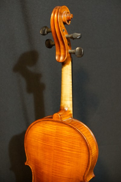 2011 Gliga Viola (4)