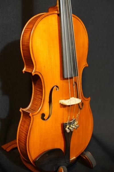 2011 Gliga Viola (8)