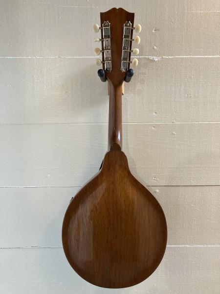 1954 Gibson A-40 (5)