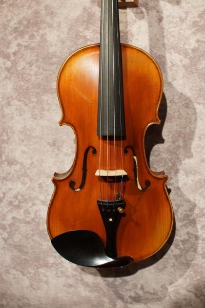 Rosalia Violin Outfit (1)