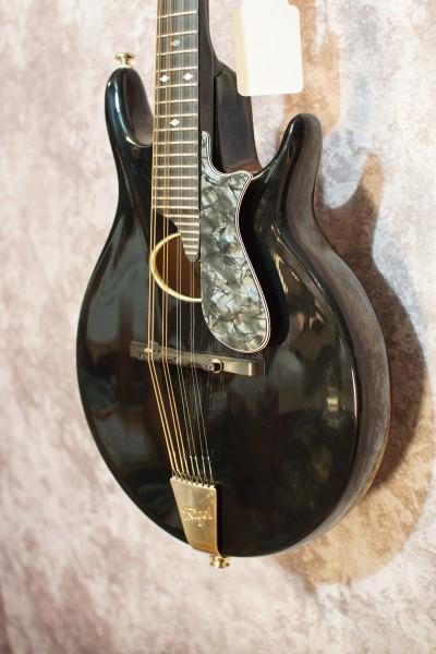 1999 Rigel G-95 (3)