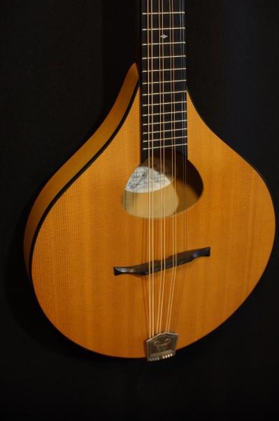 2005 Weber Sage #1 Octave Mandolin (1)