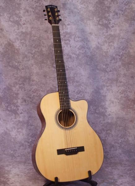 Gold Tone GBG+ Baritone Guitar (3)