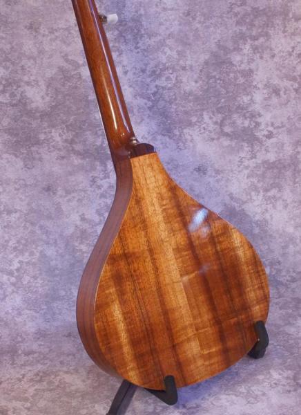 John Allison 6 String Banjola (3)