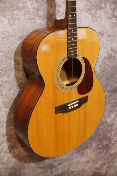 Aria Auditorium Tenor Guitar (1)