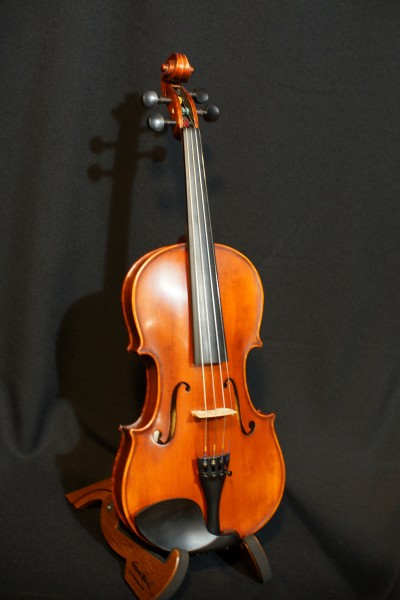 Eastman VL105 Fiddle Outfit (4)