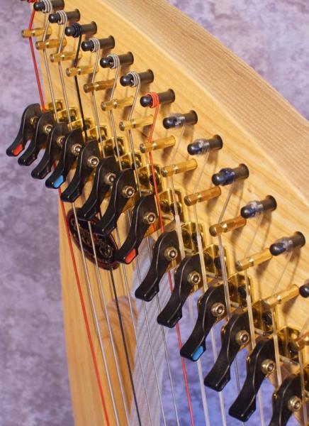 Dusty Strings Ravenna 34 (2)