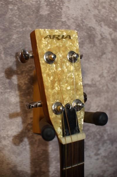 Aria Auditorium Tenor Guitar (2)