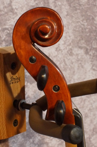 Eastman VL105 Fiddle Outfit (2)