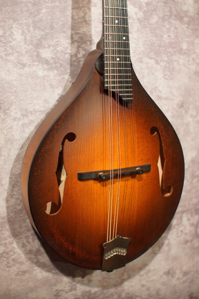 2004 Collings MT (7)