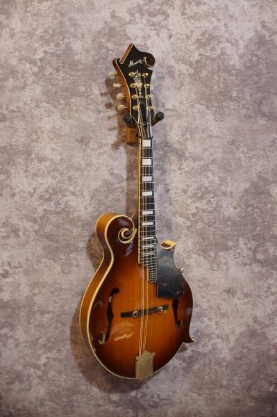 1970's Alvarez F5 (6)