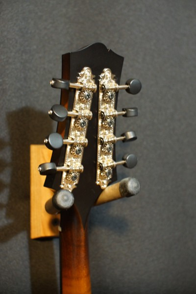 Collings MT (upgraded!) (3)