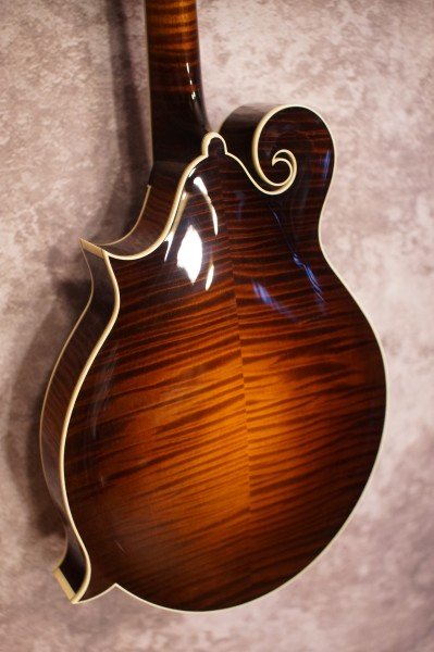 Collings MF5 Fern (2)