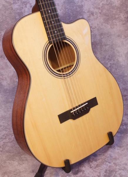 Gold Tone GBG+ Baritone Guitar (1)