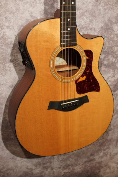 2001 Taylor 314-CE (1)