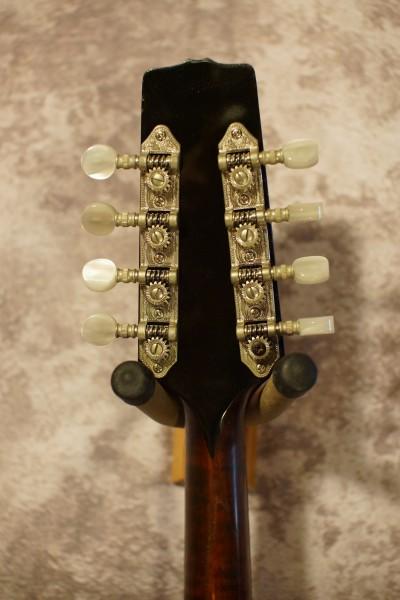 2001 Flatiron Performer A5 (2)