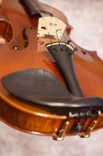 Sandro Luciano Violin (5)