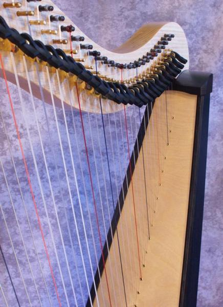 Dusty Strings Ravenna 34 (5)