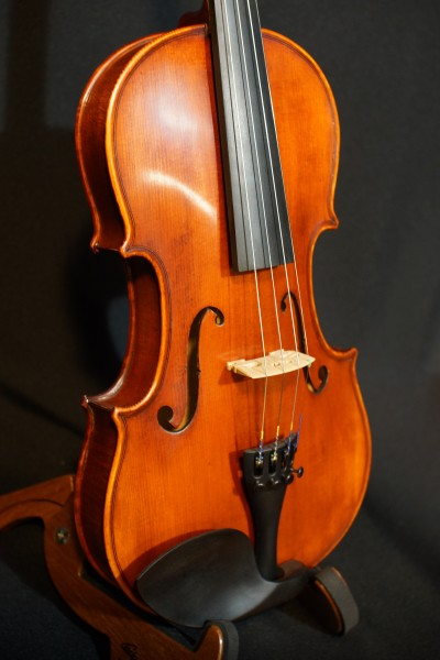 Eastman VL105 Fiddle Outfit (5)