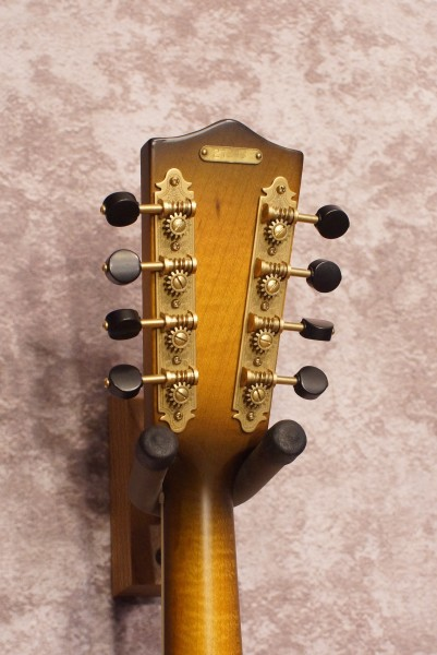 National RM1 Resonator Mandolin (7)