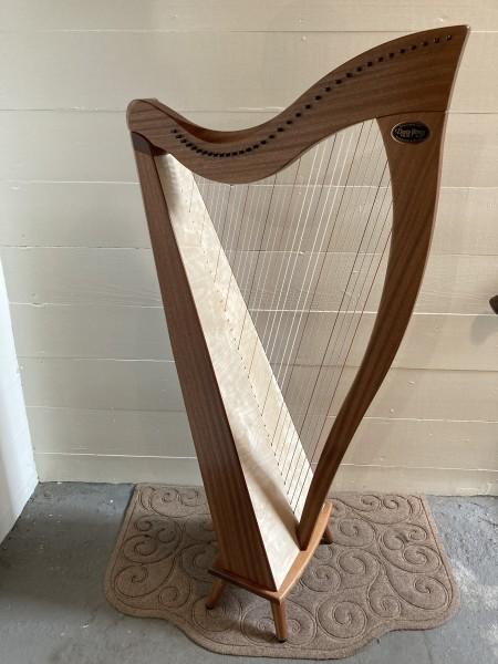 Dusty Strings Crescendo 34 (5)
