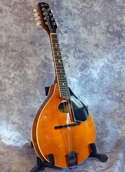 Kentucky KM 272 (Amber) (2)