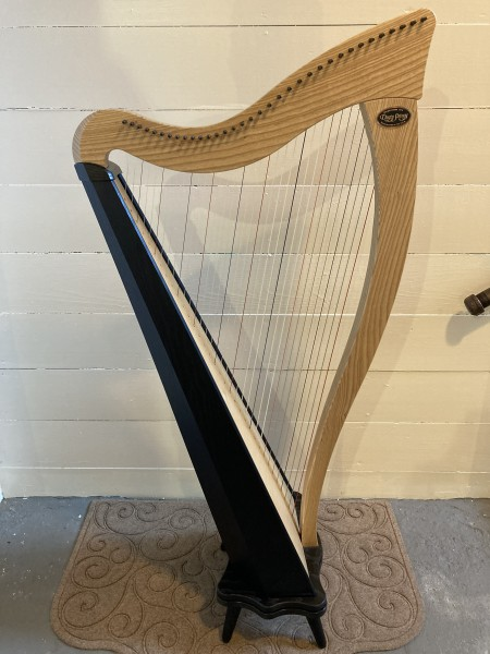 USED Dusty Strings Ravenna 34 (5)