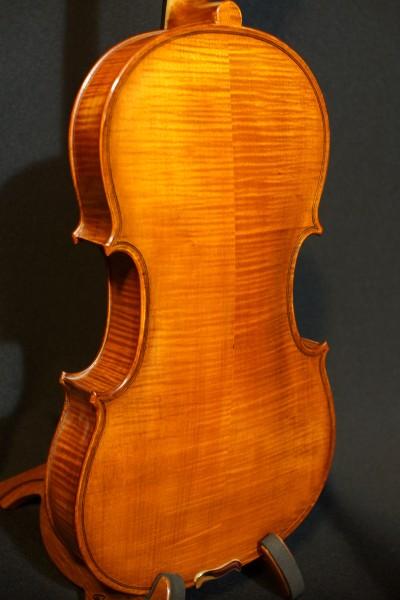 2011 Gliga Viola (5)