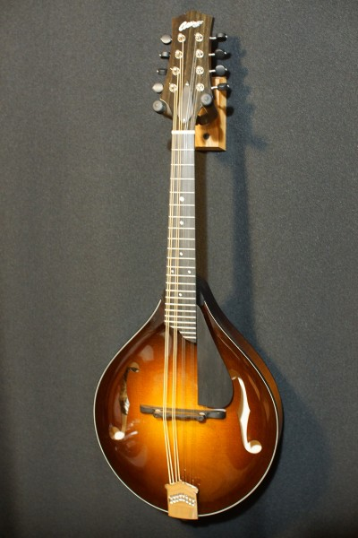 Collings MT (upgraded!) (5)