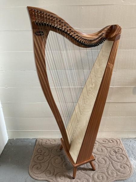 Dusty Strings Crescendo 34 (1)