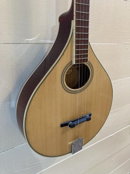 Gold Tone Banjola (wood body banjo) (4)