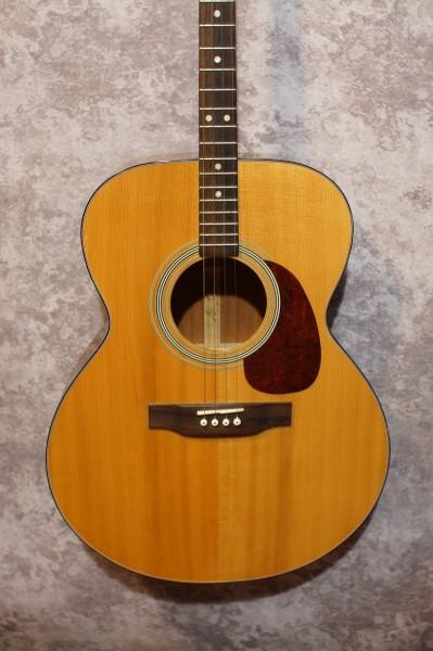 Aria Auditorium Tenor Guitar (4)