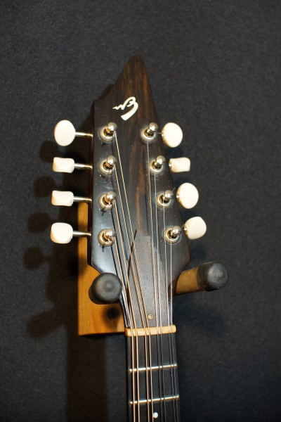 2002 Breedlove Quartz OF (5)